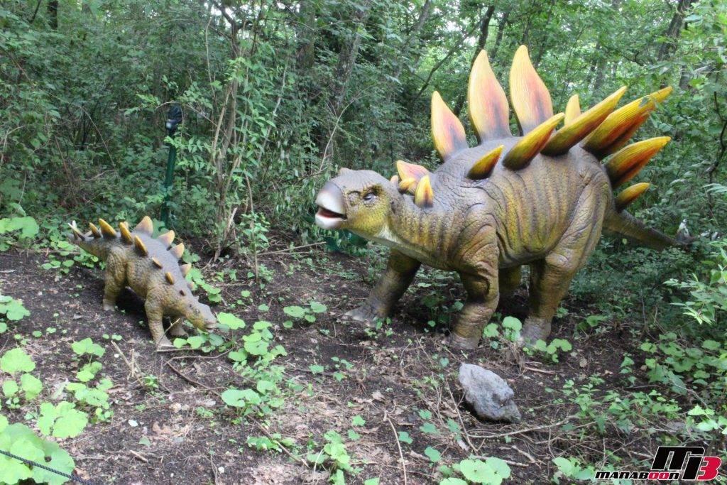 ステゴサウルス画像
