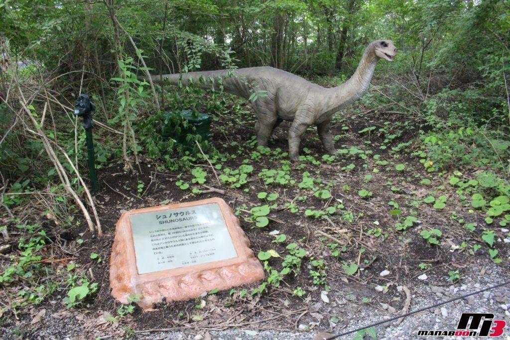 シュノサウルス画像