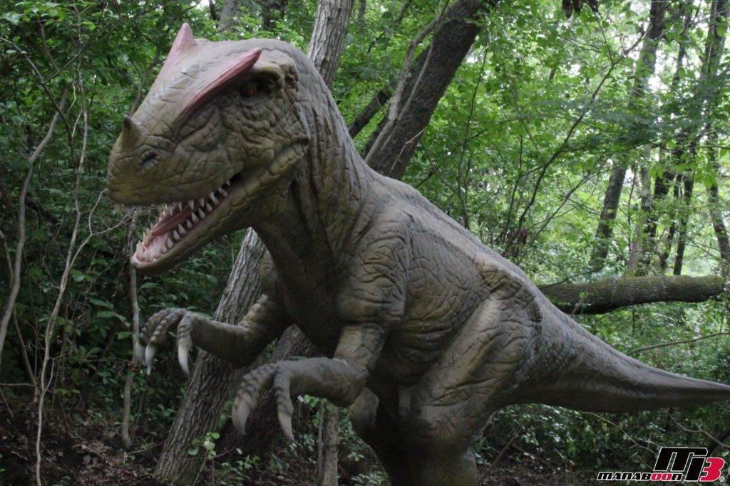 アロサウルス画像