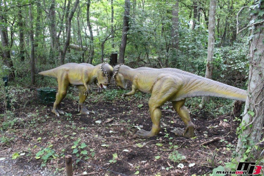 パキケファロサウルス画像